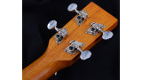 Hudson HU20S Deluxe Soprano Uke
